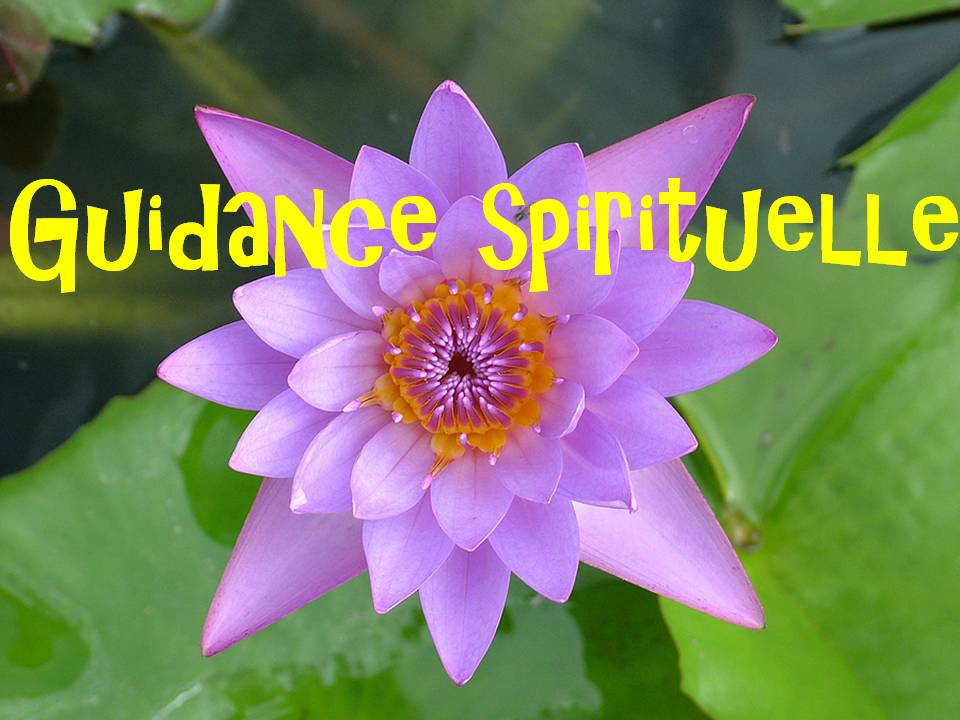 guidance spirituelle eve soins complementaires